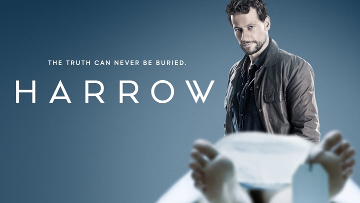 Moving Canvas Supplies artworks for ABC's 'Harrow' TV Series