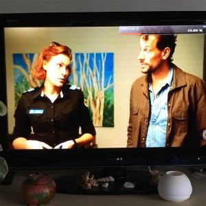 Photograph from the TV of ABC's Harrow in 2018 - Artwork by Anne McLeay