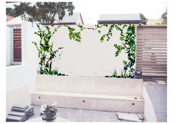 Vines mural by Banx